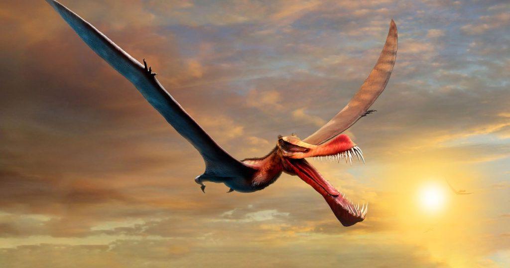 The 'fearsome dragon' that terrorized Australia's skies