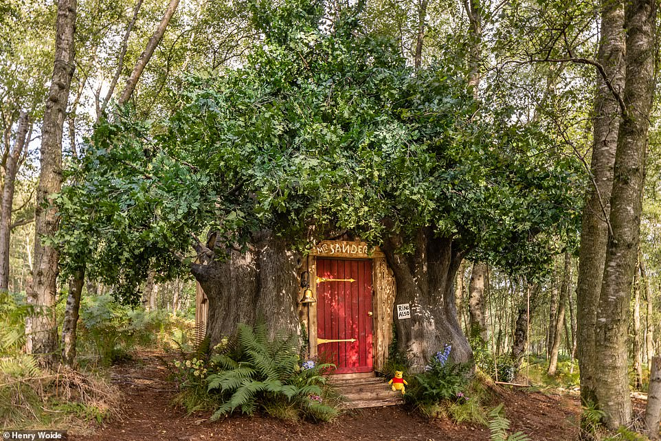 Enchanting woodland 'Bearbnb' inspired by the Winnie the Pooh house now available on Airbnb